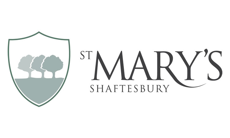 St Mary's School Affiliates to DWAA